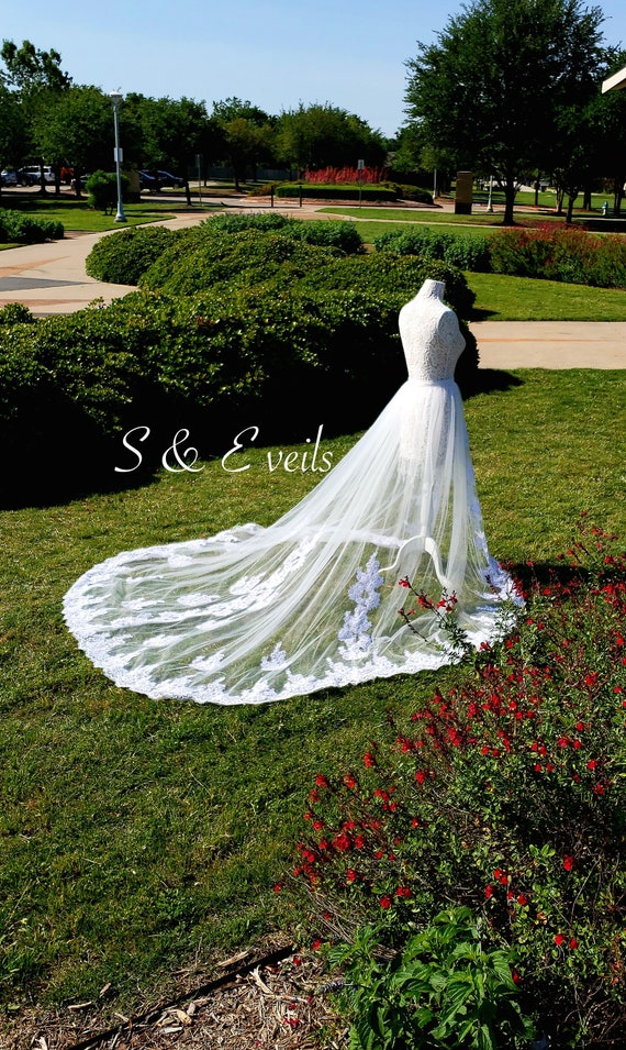 Overskirt with Lace | wedding veil