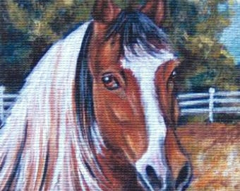 ACEO Horse PRINT Limited Edition signed numbered Glicee miniature painting