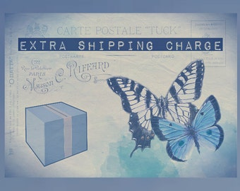 Extra Shipping Charge