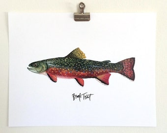 Brook Trout- Watercolor and Hand Lettered
