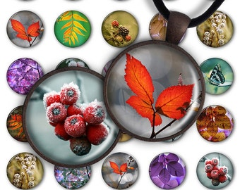 75% OFF SALE Digital Collage Sheet 1 inch round 1 inch circle Pendant Printable Download PC027 Instant Download for jewelry making - Seasons