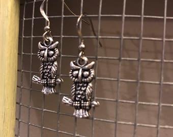 Small Hoot Owls