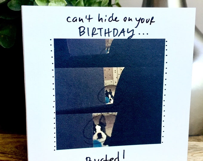 Boston Terrier birthday card, Busted, Can't Hide on your birthday, dog birthday card