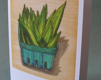 5 x 7 Notecard - A009 OKRA / vegetable card / vegetable art / foodie / cooking gift / farmers market / food illustration / southern made