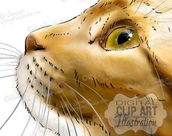 Cat Clipart | Tabby Cat Painting Download | Clipart Cat Sketch | Animal Art | Digital Scrapbooking | Scrapbooking Supplies | Cat Art