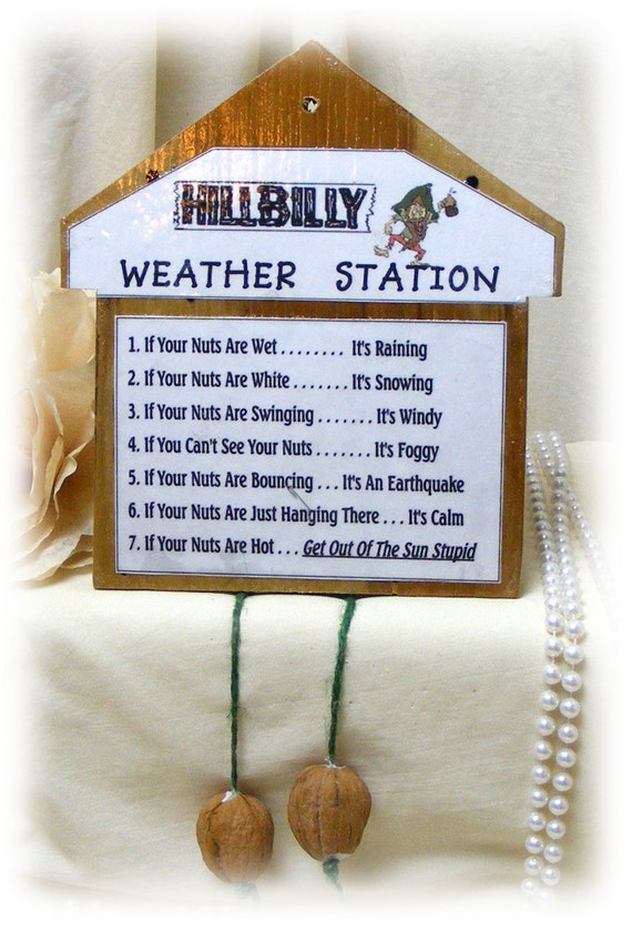HILLBILLY WEATHER STATION