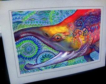 greeting Card Sock it to sockeye      Salmon    Fishing Alaska