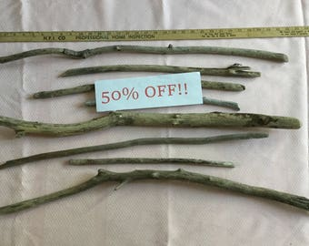 50% OFF! Collection of 8 pieces of Lake Michigan driftwood