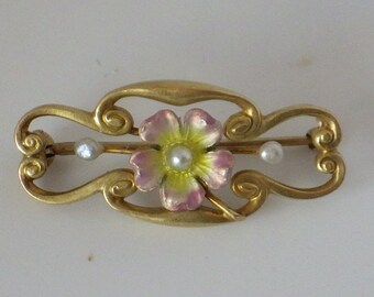 14K Nouveau Enamel and Seed Pearl Brooch