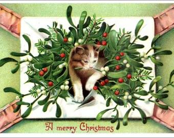 Merry Christmas antique postcard,  Cat in Christmas greenery, mistletoe, vintage postcard