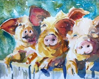 Wee 3 Pigs