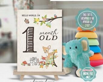 "Baby Months Signs Set of 12 Instant Download ""Deer Me"" (Printable File Only) 5""x7"" Vintage Deer Squirrel Woodland Creatures Forest Enchant"