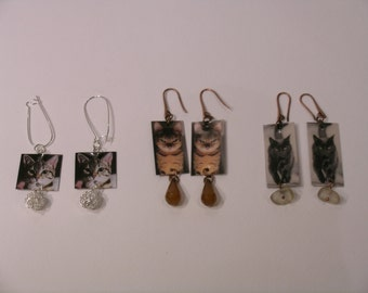 Earrings Cats