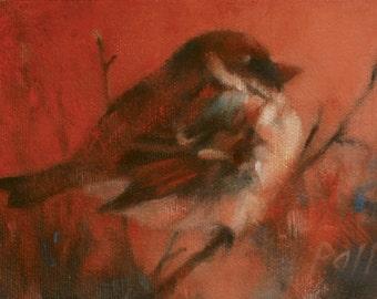 Bird - sparrow - wildlife - oil painting - original art - Pamela Poll