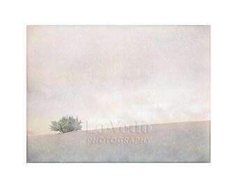 Winter Sunset, Peace, Quiet, Snow Photography, Elegant Winter Decor, Fresh, Pastel Colors, Shades of White