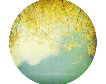 Baby Nursery Decor, Yellow, Blue, Baby Boy, Girl, Landscape Photo, Tree, Nature, Round Circle Image on an 8x10 inch Print-Willowglass