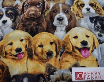 Dog Fabric, Adorable Pets by Keith Kimbrolin for Elizabeth Studio, Quilt or Craft Fabric, Fabric by the Yard