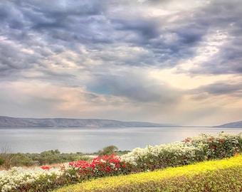 The Sea of Galilee, Israel, Galilee photography, Holy Land Photography, sea of Galilee photo, Photography, Christian wall decor