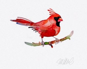 Red Cardinal Giclee Print Watercolor wall decor animal print contemporary art bird paintings
