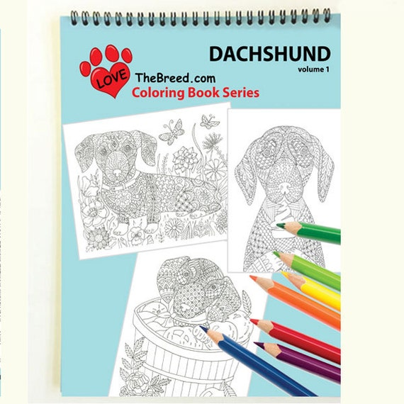Dachshund Dog Coloring Book For Adults By Love The Breed