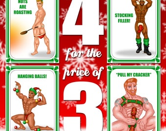 Set of 4 naughty Christmas cards for the price of 3.