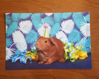 Guinea pig birthday card