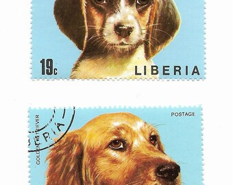 2 Dog Beagle Golden Retriever Used Postage Stamps from Liberia