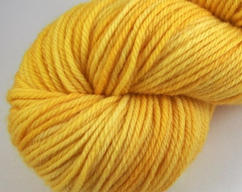 300 Days of Sunshine - Hand Dyed Worsted Weight Yarn