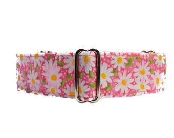Pink Martingale Collar, Pink Dog Collar, Daisy Martingale Collar, Daisy Dog Collar, 1.5 Inch Martingale Collar Greyhound Collar, Pink Daisy