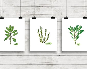Herb Watercolor Prints Herb Print Set Botanical Prints Giclee Herb Prints Kitchen Art Botanical Watercolor Culinary Herbs Herb Cooking Art