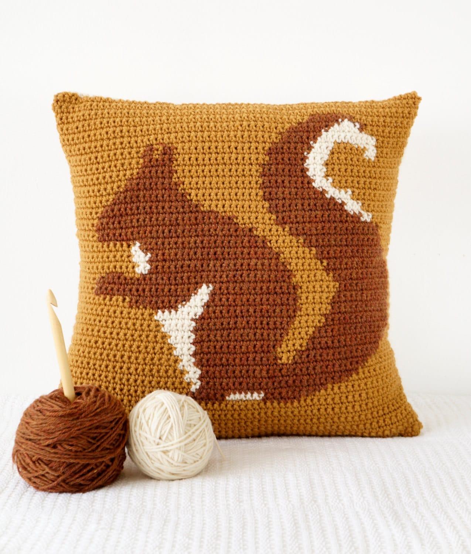 Crochet decor pattern cushion for fall crochet pattern zoom bankloansurffo Choice Image