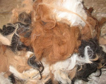 Raw Unwashed Alpaca Mixed Colours Fleece for Craft, Spinning and Stuffing