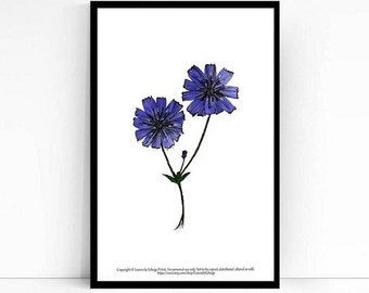 instant printable chicory flower - 5x7 inch artwork - purple flowers - nature inspired floral wall art - cichorium intybus - fleur - flores
