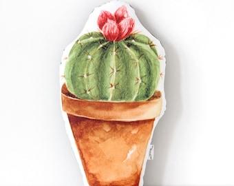Cactus Cushion Pink Flower
