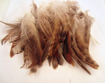 30 Gray feathers natural  Chinchilla Schlappen Feathers 3 to 5 inches
