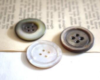 Abalone Shell Antique Buttons x 3 Medium