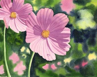 Pink Cosmos Art Watercolor Original Painting by Cathy Hillegas, 11x14, watercolor painting, watercolor flowers, watercolor floral, Cosmos 10