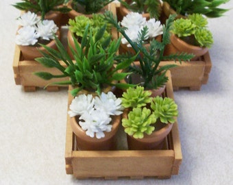 Miniatur-Blumentöpfe mit einer Holzkiste: Fee oder Miniatur Gärten Terrarien Puppe Haus Dekor