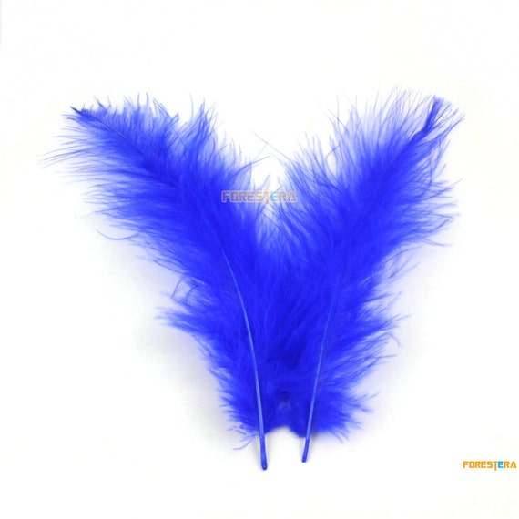 50 Pieces Blue Feather 9 15cm Ym278 From Forestera On