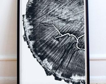 Tree Rings, Large Wall Art, PRINTABLE, Oak Tree, Printable art, 11.7 x 16.5 in. Tree stump, English, log slice