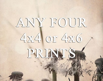 Any Four 4x4 or 4x6 Prints - Your Choice - Baby Nursery - Custom Photo Set - gifts under 25
