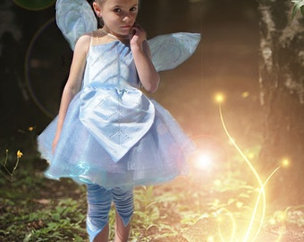 Periwinkle Fairy costume and wings