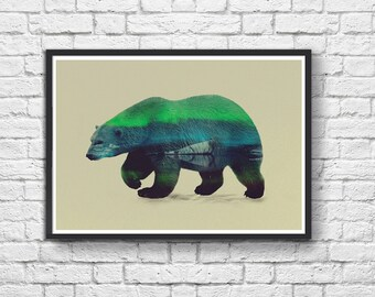 Art-Poster 50 x 70 cm - Polar Bear