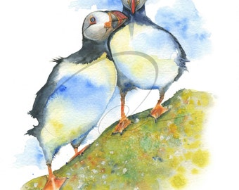 Warm Fuzzy - Puffin Birds, Friends, Together, Birds, Wild, Nature, Available in Paper & Canvas by Olga Cuttell