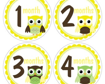 12 Monthly Baby Milstone Waterproof Glossy Stickers - Just Born - Newborn - Weekly stickers available - Design M031-04