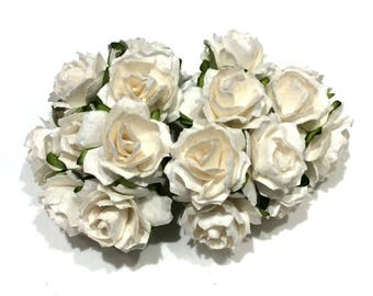 White Tattered Mulberry Paper Roses Tr001
