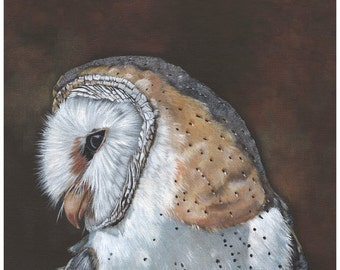 Barn Owl Painting  Bird Art Print of owl painting 5 by 7 print BO4115 wall art print - bird art print  - owl decor