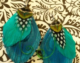 DEELIA Turquoise and Green Peacock Feather Earrings