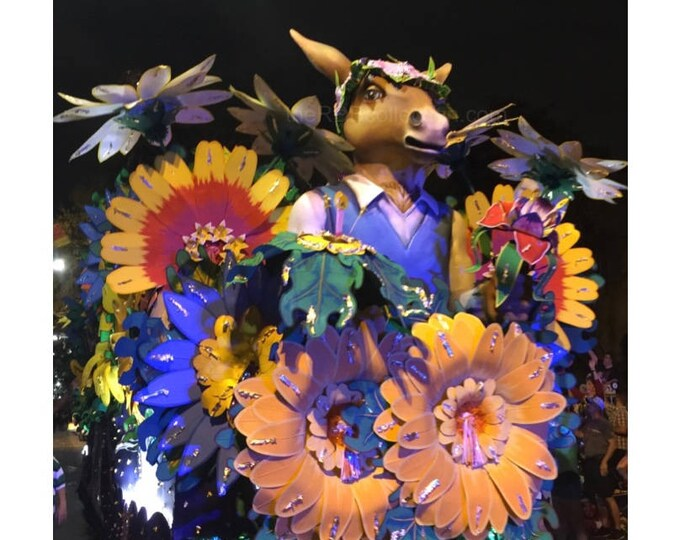 Midsummer Night's Dream Donkey Photograph