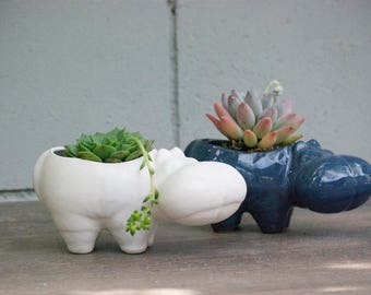Hippo ceramic planters, Desk Plants, Planters for succulent plants,  Small indoor planters, Animal planters, Office gift, Handmade pottery